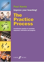 Picture of The Practice Process